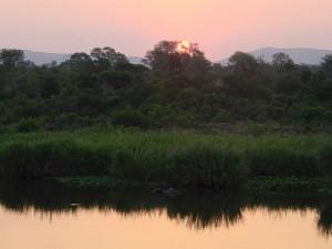 Krokotiilijoki Krugerin kansallispuistossa (kuva: Esculapio CC-BY-SA)