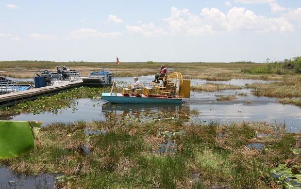 Suoalueelle järjestetään opastettuja retkiä, joiden aikana alligaattoreita pääsee tarkastelemaan lähietäisyydeltä ilmatyynyveneistä. (kuva: Cacophony CC-SA)