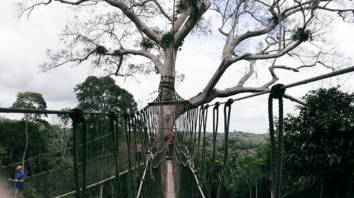 Kakumin kansallispuisto (kuva: Veennema CC-BY-SA)