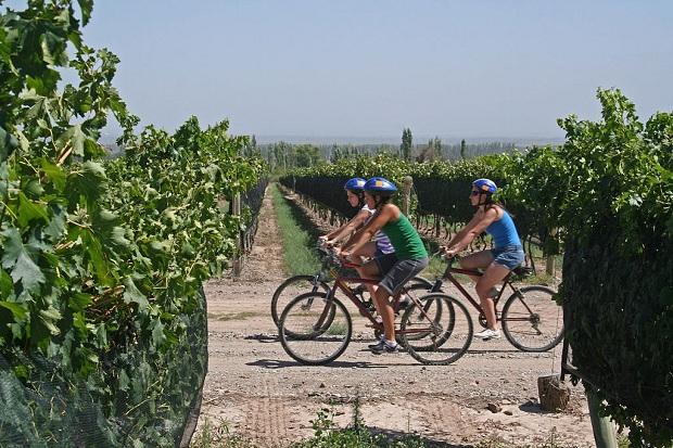 Mendozan viinialueisiin voi tutustua myös pyöräillen. (kuva: Turismo Baquía CC-SA)
