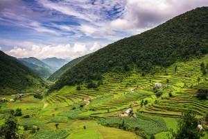 Nepalin vehreä puoli (Kuva: Sharada Prasad CS CC BY 2.0)