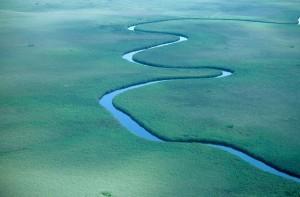 Okawango-joen vehreä suistoalue (Kuva: lwh50 CC BY 2.0)
