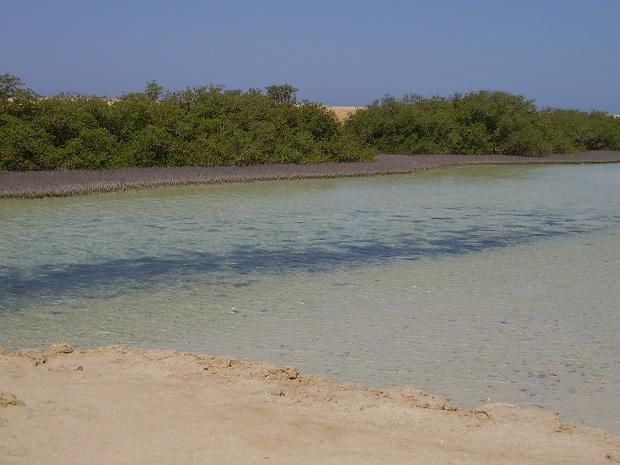 Ras Mohammedin kansallispuisto (kuva: Kormoran CC-SA)