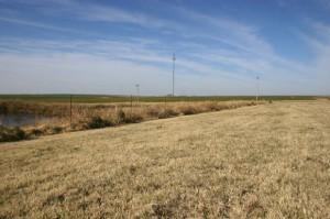 Oklahoman viljapellot