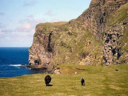 Shetlannin saari (kuva: Lis Burk CC-BY-SA)