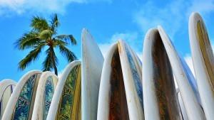 Surffilaudat odottavat aaltoja (Kuva: Edmund Garman CC BY 2.0)