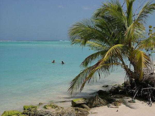 Tobagon rantamaisemaa (kuva: Reinhard Jahn CC-BY)