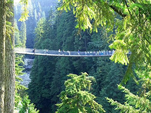 Capilano-silta (kuva: goobiebilly CC-BY)